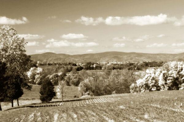 Autumn Foothills 5