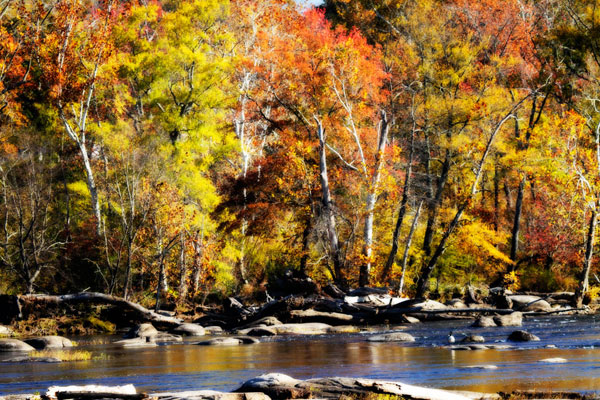 Autumn on the River 8