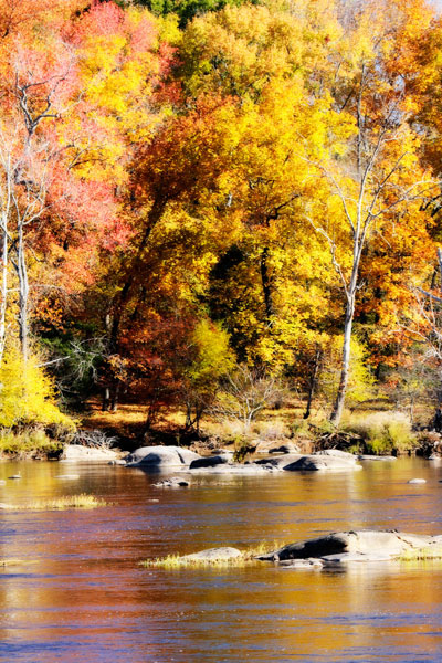 Autumn on the River 11