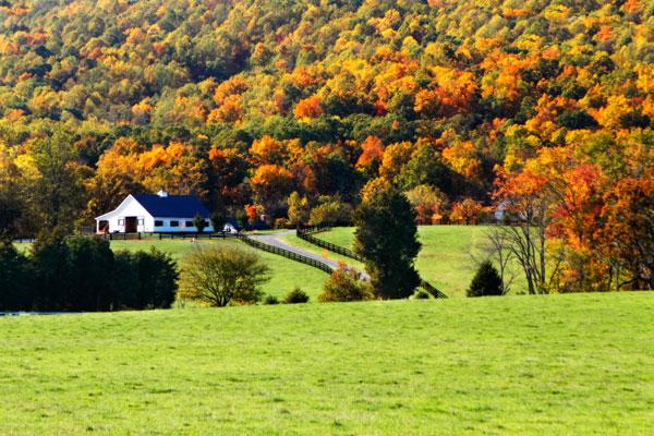 Mountain Farm 1