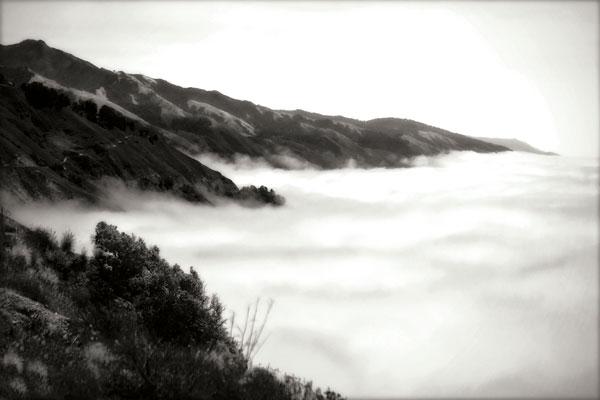 Pacific Fog I