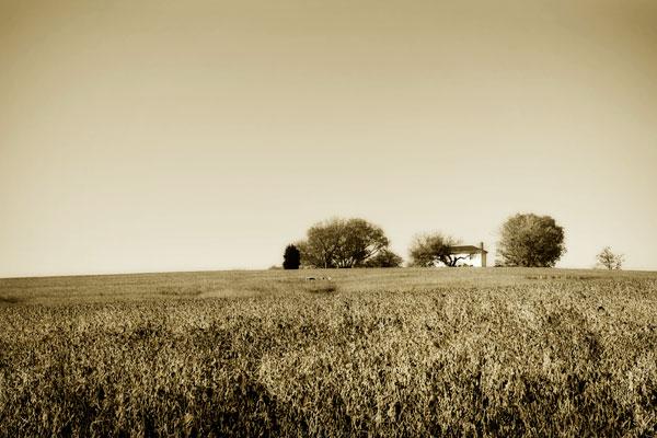 Goochland Farm I