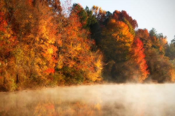 Autumn Mist III