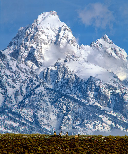 Grand Teton National Park V