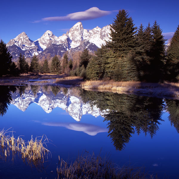 Grand Teton National Park VII