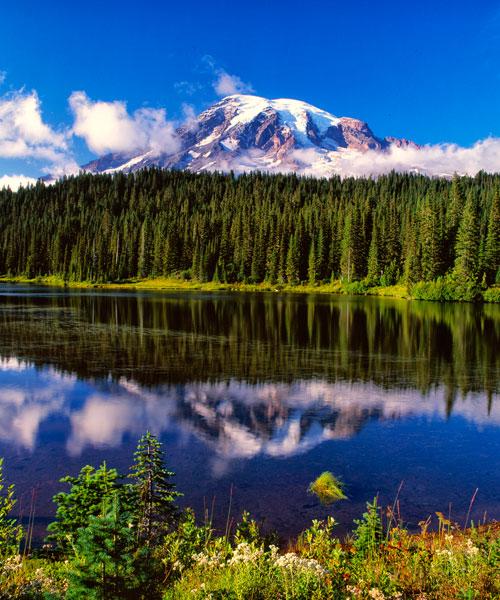 Mt. Rainer II