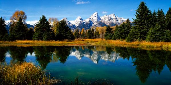 Grand Teton National Park XI