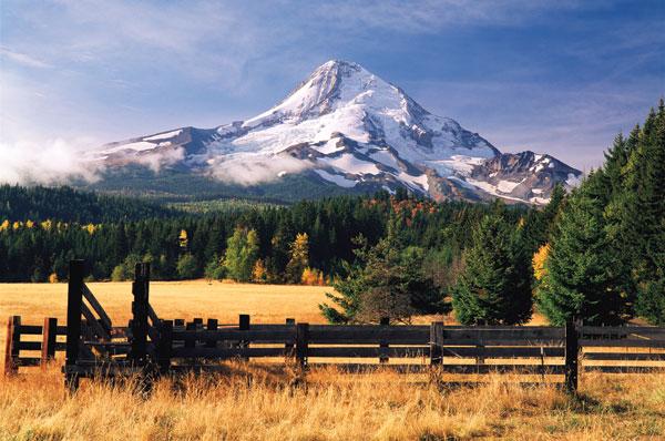 Mt. Hood X