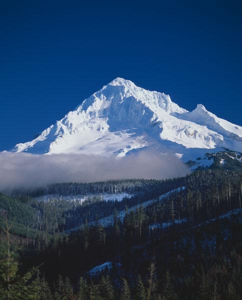 Mt. Hood XIII