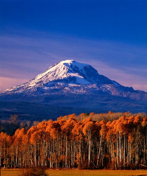 Mt. Adams III