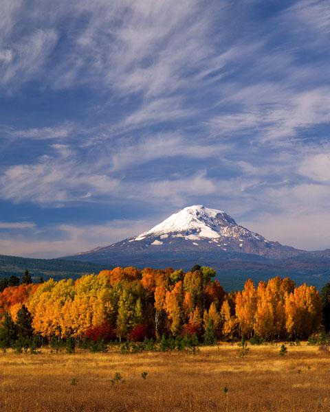 Mt. Adams IV