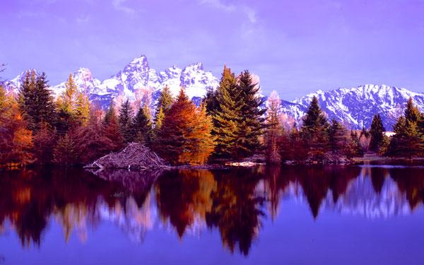 Grand Teton National Park XIV