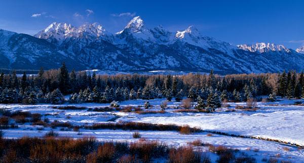 Grand Teton National Park XVI