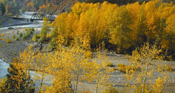 Hood River RR Bridge