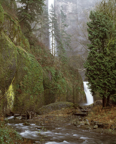 Multnomah Falls Creek Side II
